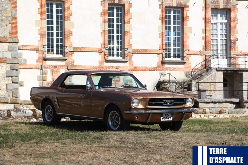 ford mustang 289 a l arriere du chateau